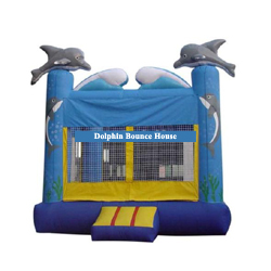 Buffalo Dolphin Bounce House